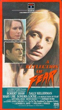 This is the poster for A Reflection of Fear