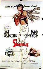 This is the poster for Shamus
